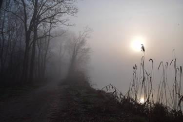 River side by DavidMnr