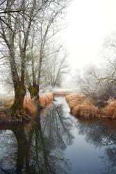Les silences de l'hiver by DavidMnr