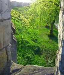 Secret Garden by MrWootton