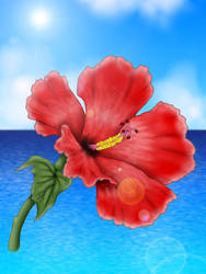 Hibiscus by Kradath