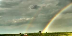 Rainbow I by cavinton