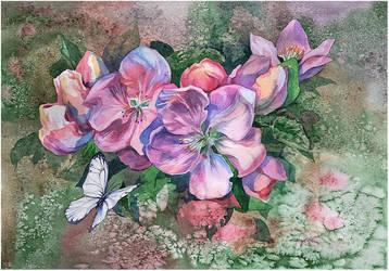 apple blossoms by kosharik69