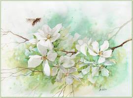 the May flowering by kosharik69