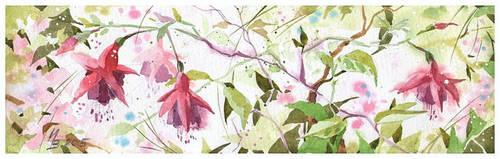 Fuchsia by kosharik69