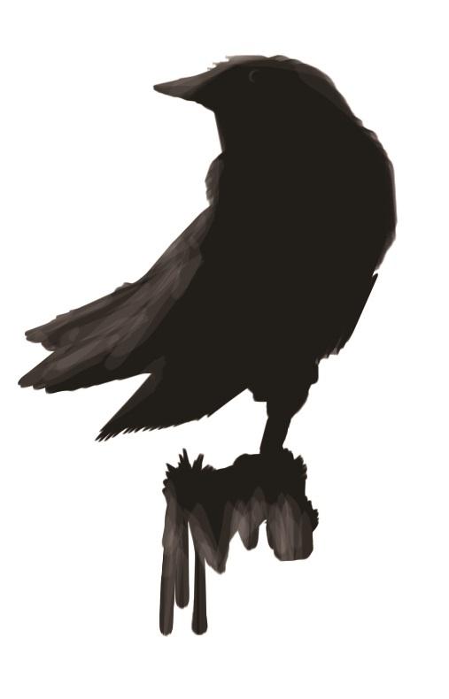 corvid by kaiakai