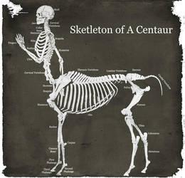 Centaur by brandonashalintubbi