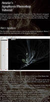 Apophysis Tutorial by Arazio