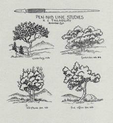 Tree Pen Nib Studies by Zage56