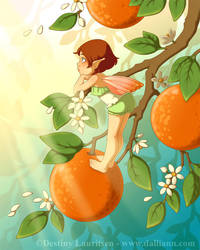 Tangerine Blossoms by Dalliann