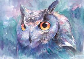 Illusive Owl by snowmarite