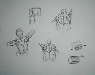 Simple Anatomy construction [Practice - 20] by Nishant321go