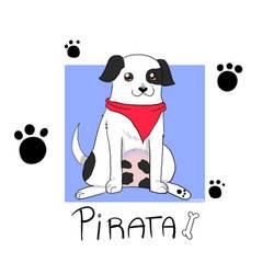 Pirata by animetomodachi