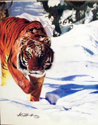 Snow Stalker by glen-bramlitt
