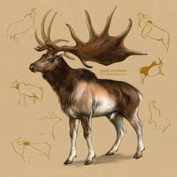 Megaloceros giganteus - Irish elk by oxpecker