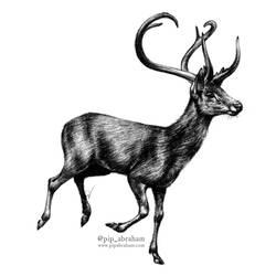 DrawDeercember day 13: Eld's deer by oxpecker