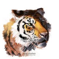 Tiger speedpaint by oxpecker