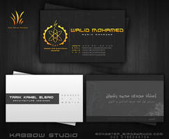 Business Cards Package 2 by Atef-Emran