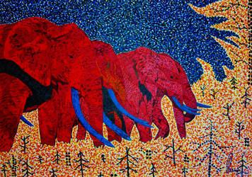 Firephants by bernardojr