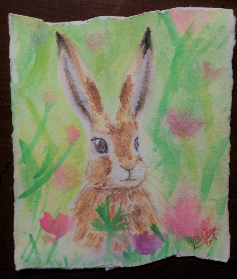 hare_and_wildflowers_by_matcharrie_dci4x