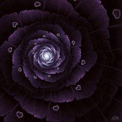 Lovely Flower by Stufferhelix
