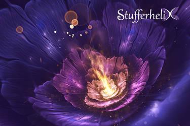 Burning Flower by Stufferhelix