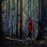 Not Lost, Just Wandering by bronart