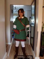 Link Costume by Linkfromzelda