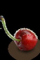 Cherry by mylichka