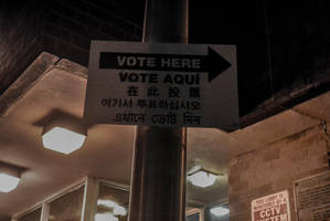 Voting, Democracy by PJM74
