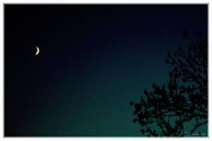 MOON by Jna1985