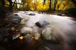 autumn by nim-a