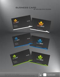 Nice and smooth Business Card by r0naldosla