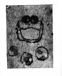 Cookie Monster Negative Print by ridgl