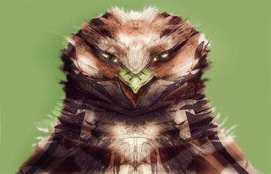 Hawk by Montyok