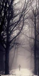 Walk Between Seasons. by andokadesbois