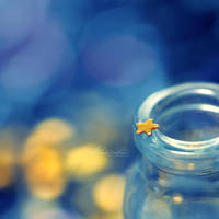 Little Star. by andokadesbois