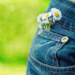 Spring In My Blue Jeans. by andokadesbois