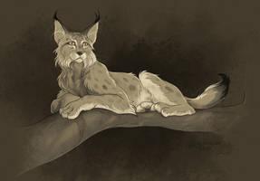 Lynx by sans-art