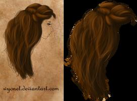 Hair Stock 2 by Wyonet