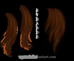 hair strands by Wyonet