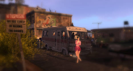 At the Lakeside Trailer Park - No Trespassing by MadokaKawabata
