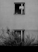 Angel Next Door by fragilesandy