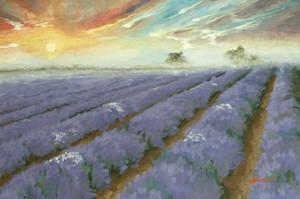 Lavender by Ondrejkova