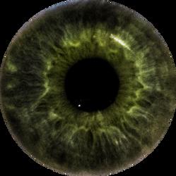 Stephen's Eye Iris by NJakStudio