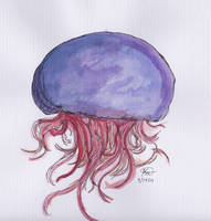 Jellyfish by TemperTempest