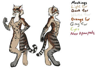 Mirkara fur reference by plangkye