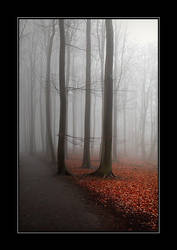 A misty hideaway by eswendel