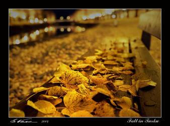 Fall in Turku by eswendel