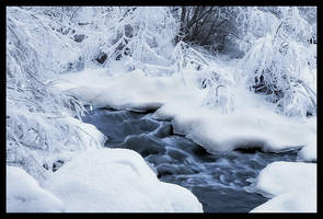 Sound of winter silence by eswendel