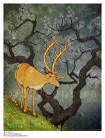 .: the ceryneian hind :. by xdragonflyx